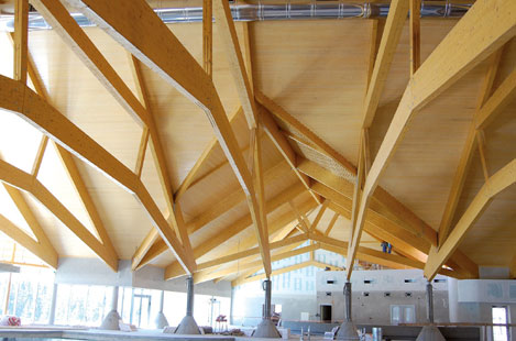 Duo / Trio and Glulam Beams in use